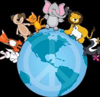 День защиты животных фоторассказ