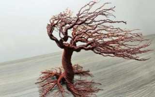 Деревья из проволоки фото